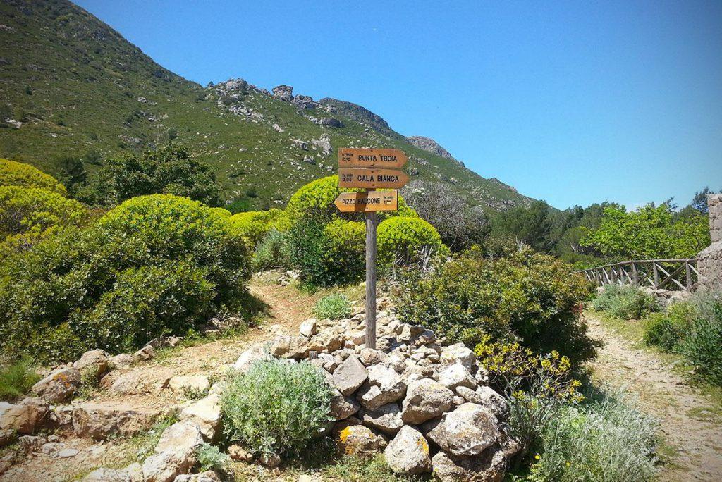 Sentieri trekking