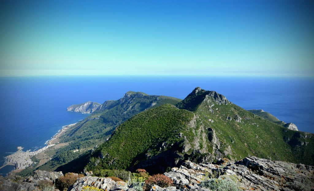 Monte Falcone